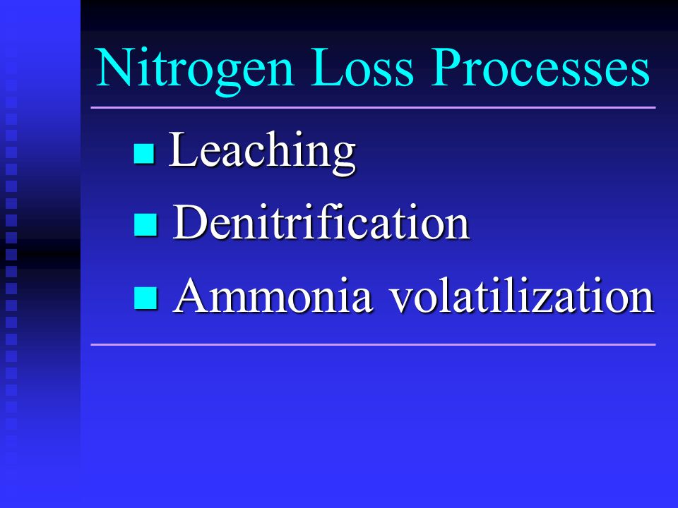Nitrogen Loss Processes Leaching Leaching Denitrification Denitrification Ammonia volatilization Ammonia volatilization