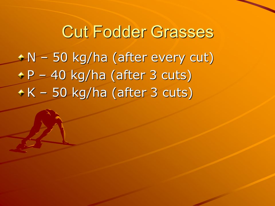 Cut Fodder Grasses N – 50 kg/ha (after every cut) P – 40 kg/ha (after 3 cuts) K – 50 kg/ha (after 3 cuts)