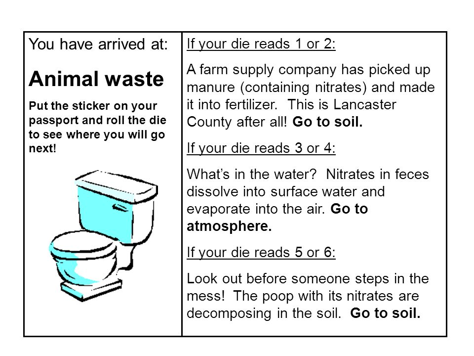 You have arrived at: Animal waste Put the sticker on your passport and roll the die to see where you will go next! If your die reads 1 or 2: A farm su