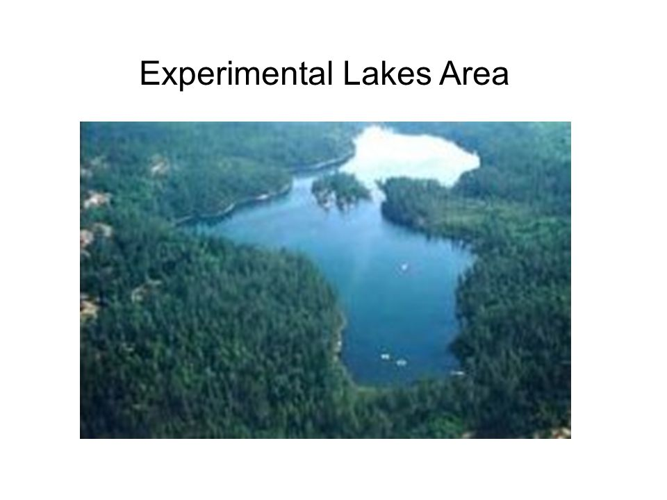 Experimental Lakes Area