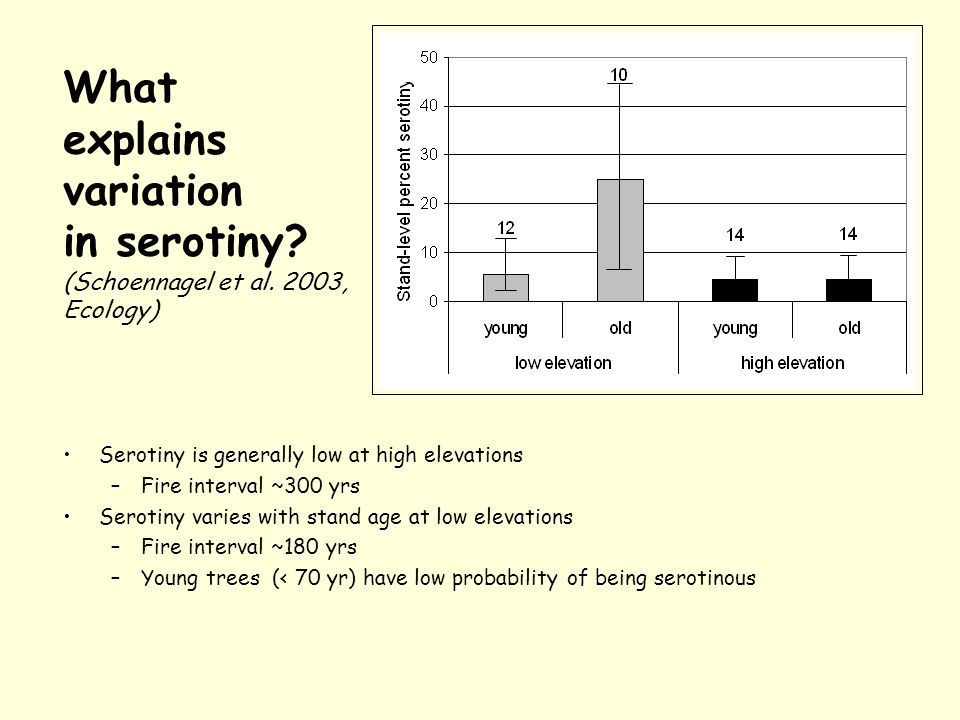 What explains variation in serotiny. (Schoennagel et al.