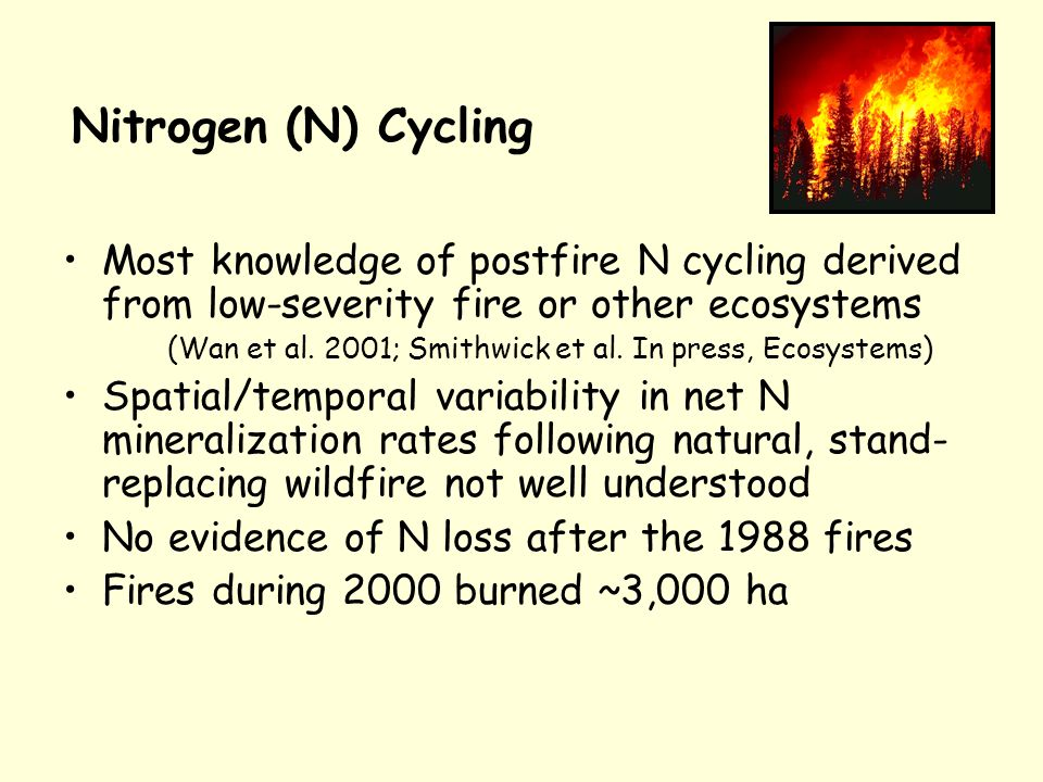 Nitrogen (N) Cycling Most knowledge of postfire N cycling derived from low-severity fire or other ecosystems (Wan et al.