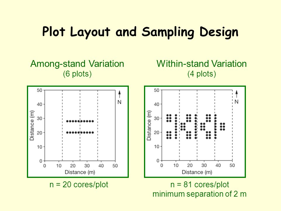 Plot Layout and Sampling Design Within-stand Variation (4 plots) Among-stand Variation (6 plots) n = 20 cores/plotn = 81 cores/plot minimum separation of 2 m