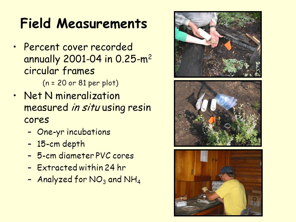 Field Measurements Percent cover recorded annually 2001-04 in 0.25-m 2 circular frames (n = 20 or 81 per plot) Net N mineralization measured in situ using resin cores –One-yr incubations –15-cm depth –5-cm diameter PVC cores –Extracted within 24 hr –Analyzed for NO 3 and NH 4