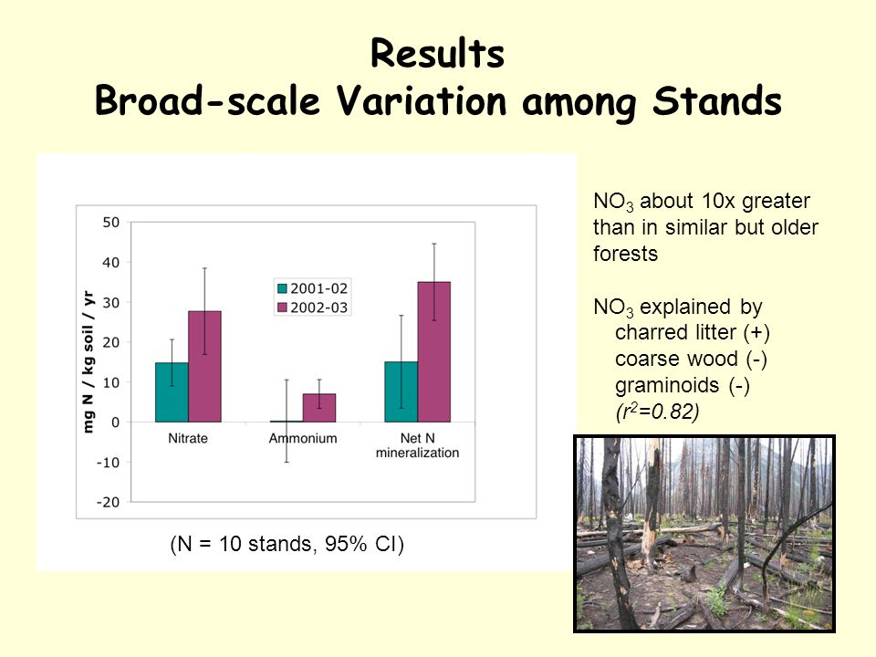 Results Broad-scale Variation among Stands (N = 10 stands, 95% CI) NO 3 about 10x greater than in similar but older forests NO 3 explained by charred litter (+) coarse wood (-) graminoids (-) (r 2 =0.82)