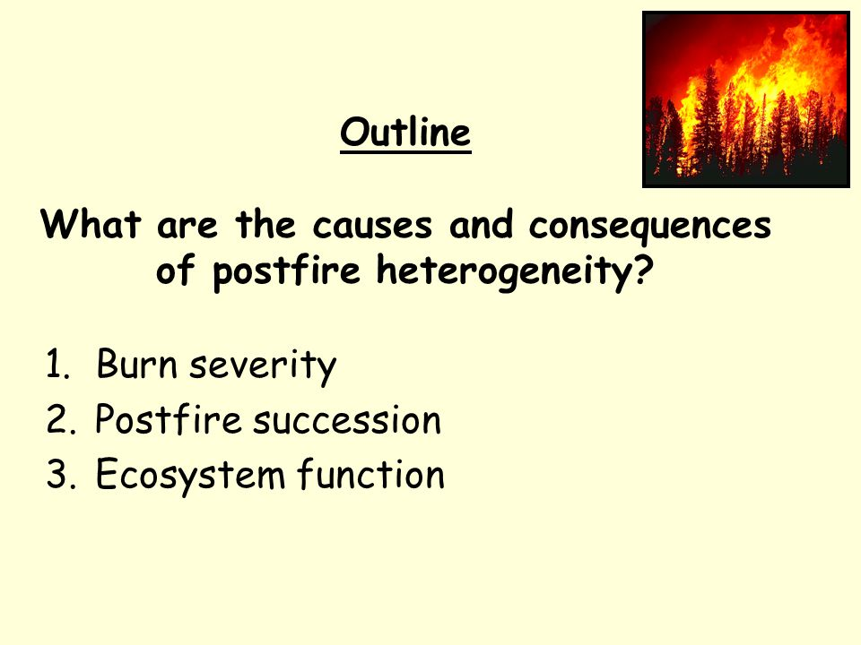 Burn severity Higher postfire pine densities in severe surface burn than in similar areas of crown fire.