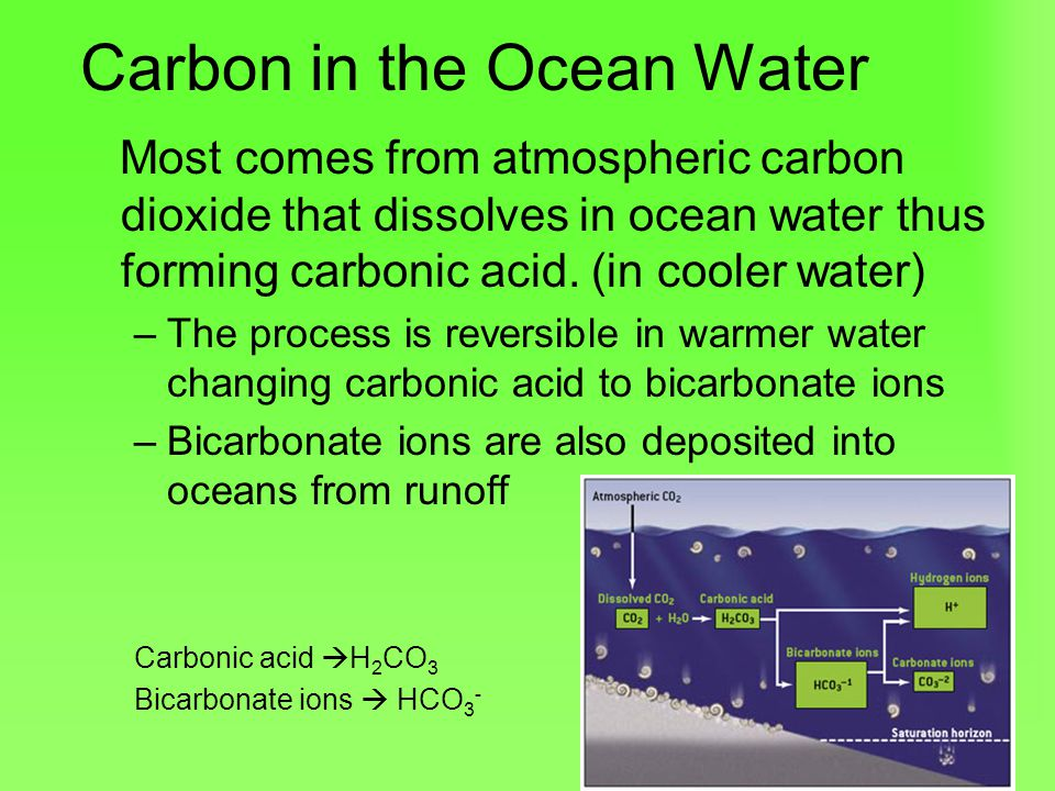 Carbon in the Ocean Water Most comes from atmospheric carbon dioxide that dissolves in ocean water thus forming carbonic acid.