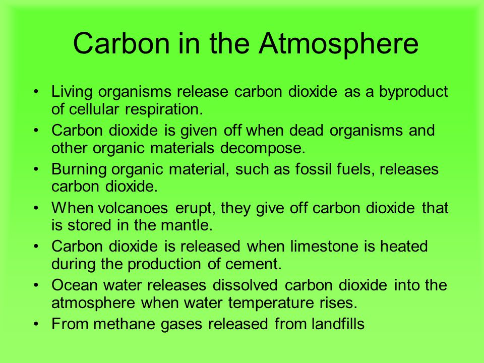 Carbon in the Atmosphere Living organisms release carbon dioxide as a byproduct of cellular respiration.