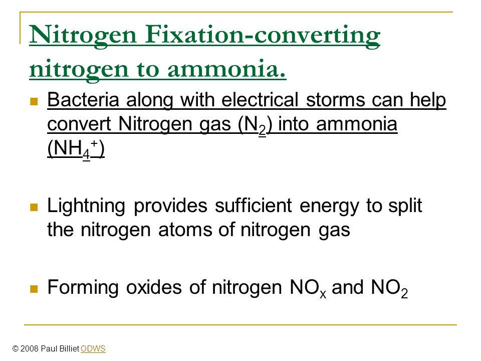 Nitrogen Fixation-converting nitrogen to ammonia. Bacteria along with electrical storms can help convert Nitrogen gas (N 2 ) into ammonia (NH 4 + ) Li