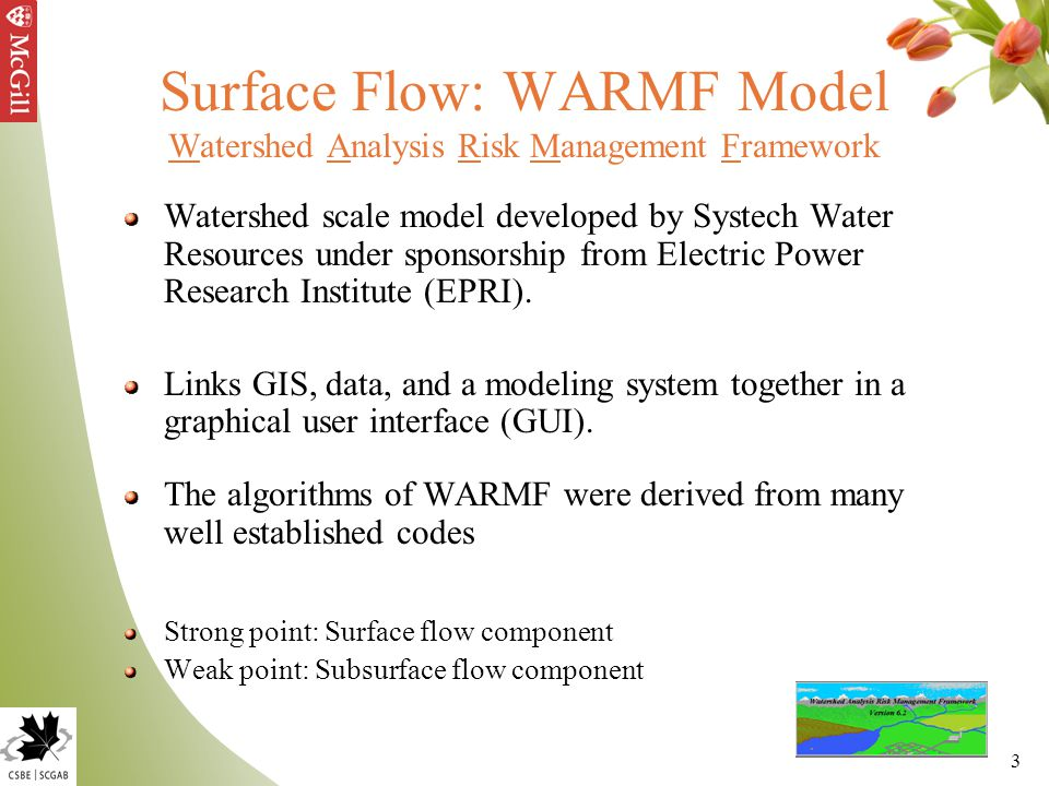 3 Surface Flow: WARMF Model Watershed Analysis Risk Management Framework Watershed scale model developed by Systech Water Resources under sponsorship from Electric Power Research Institute (EPRI).