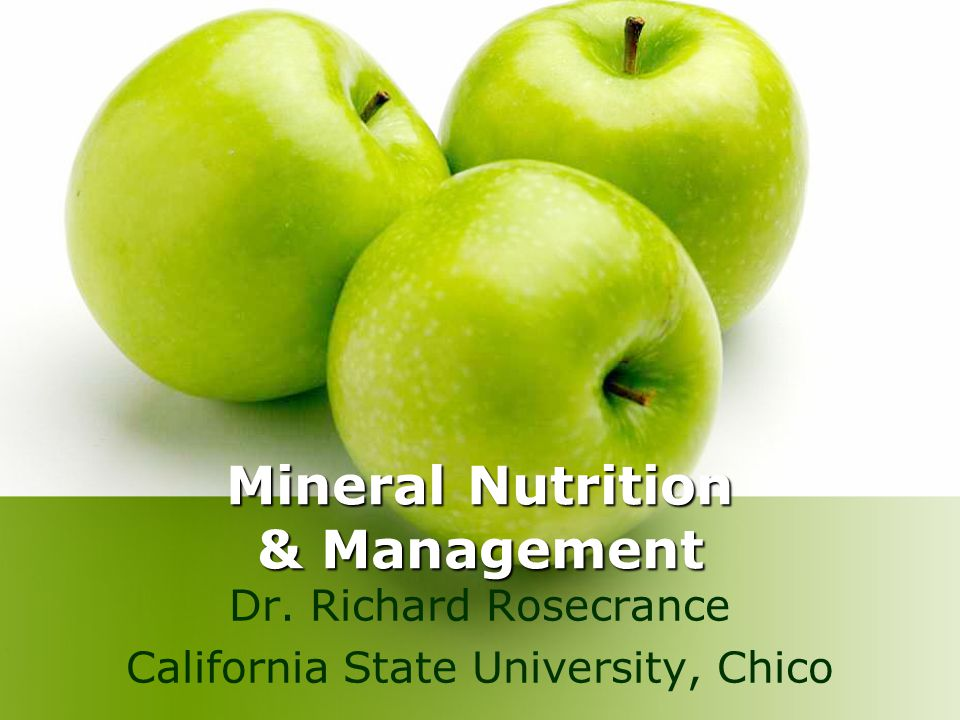 Mineral Nutrition & Management Dr. Richard Rosecrance California State University, Chico