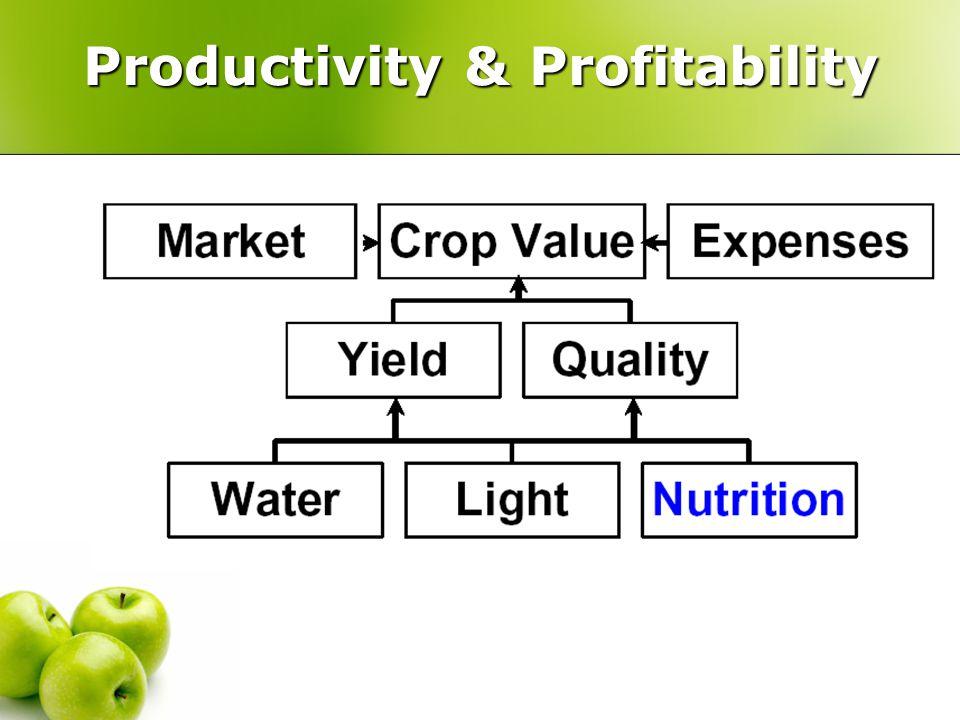 Outline 1.Nutrient pathways to plants 2. N fertilization efficiency.