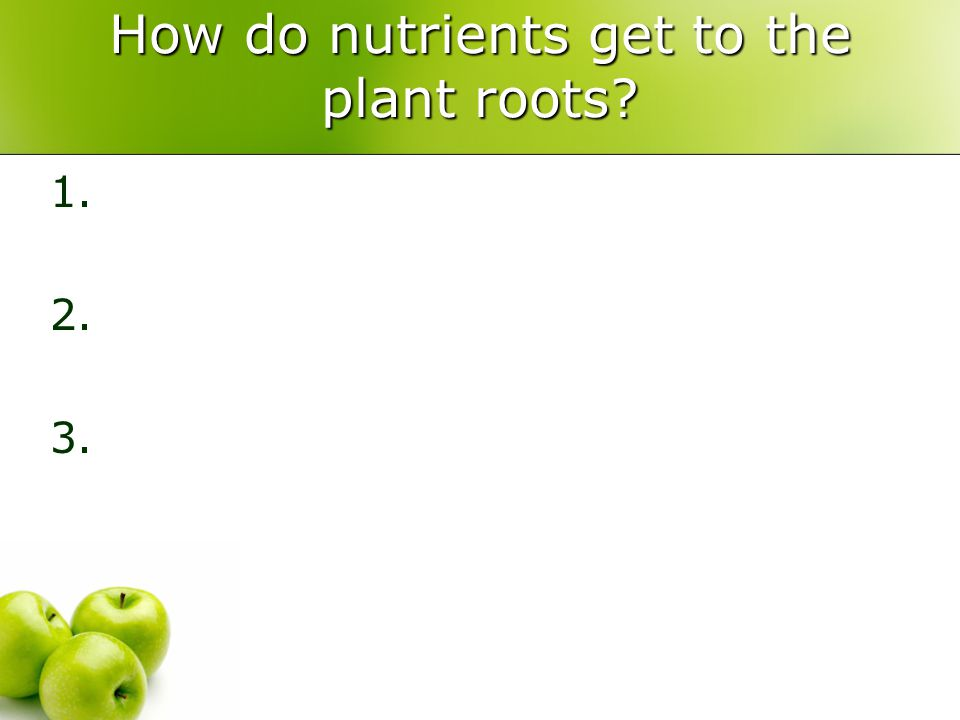 How do nutrients get to the plant roots? 1. 2. 3.