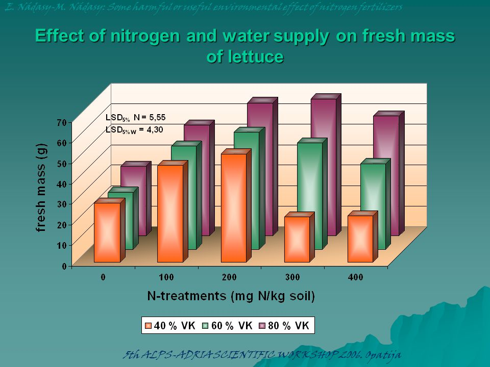 Effect of nitrogen and water supply on fresh mass of lettuce E. Nádasy-M. Nádasy: Some harmful or useful environmental effect of nitrogen fertilizers
