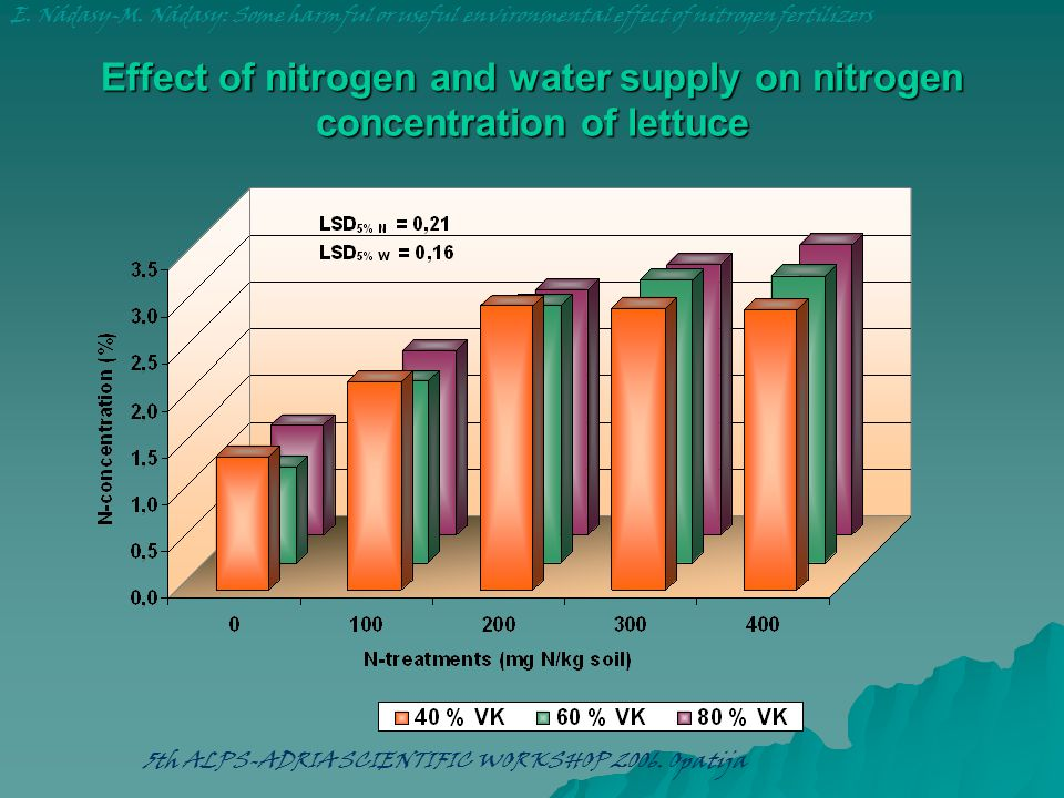 Effect of nitrogen and water supply on nitrogen concentration of lettuce E. Nádasy-M. Nádasy: Some harmful or useful environmental effect of nitrogen