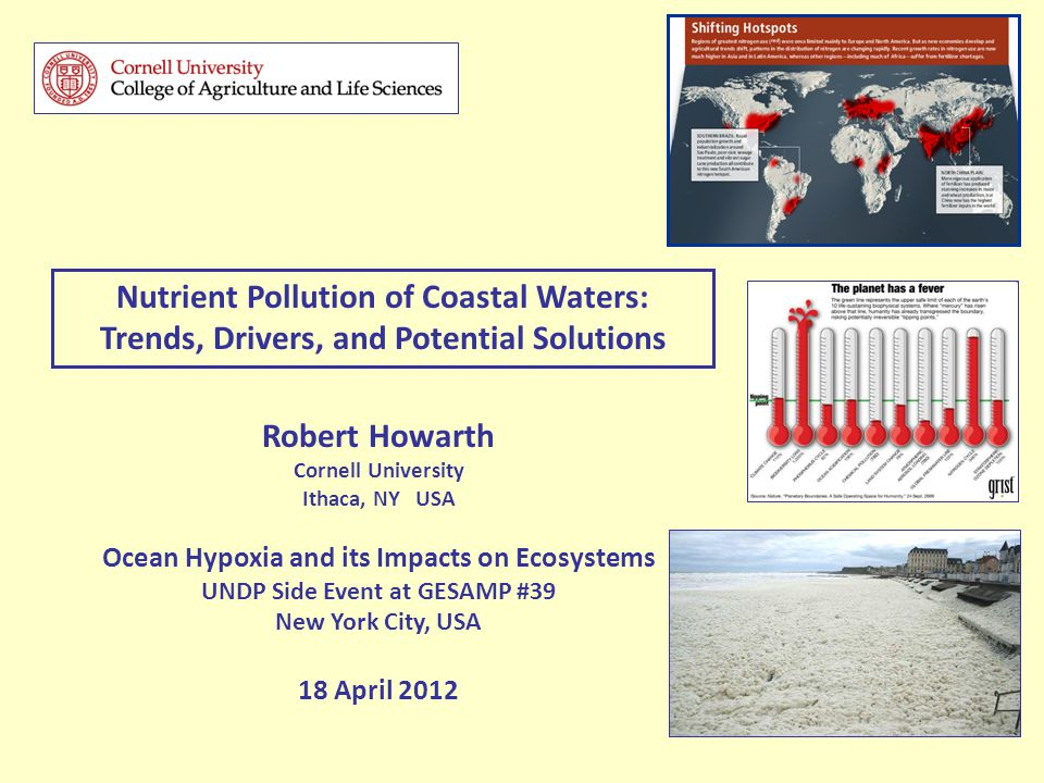 Robert Howarth Cornell University Ithaca, NY USA Ocean Hypoxia and its Impacts on Ecosystems UNDP Side Event at GESAMP #39 New York City, USA 18 April 2012 Nutrient Pollution of Coastal Waters: Trends, Drivers, and Potential Solutions