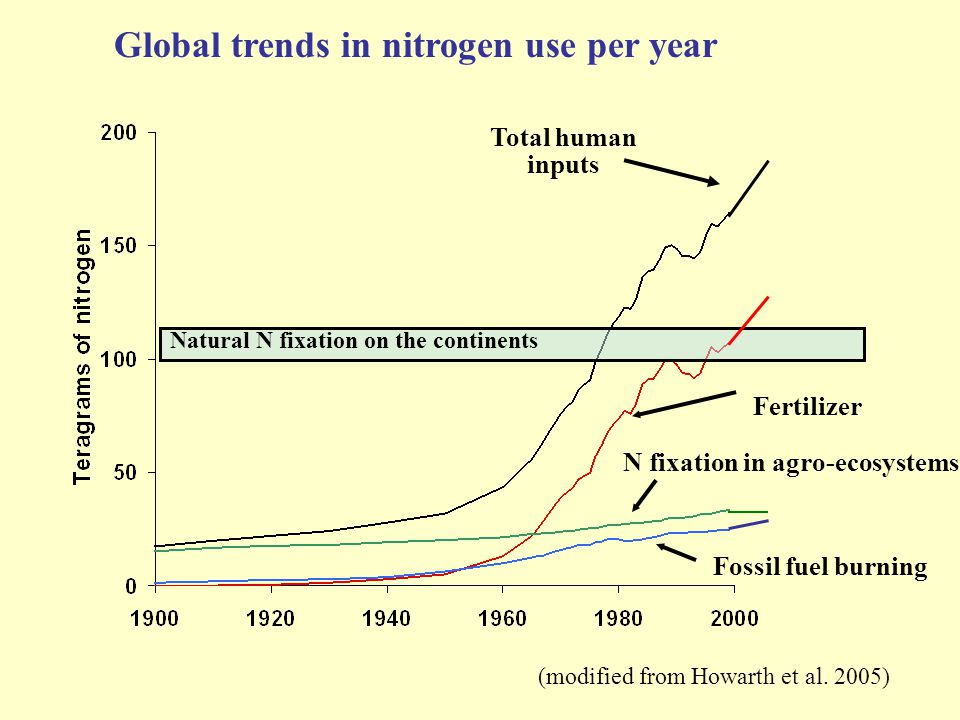 Natural N fixation on the continents Total human inputs Fertilizer N fixation in agro-ecosystems Fossil fuel burning Global trends in nitrogen use per year (modified from Howarth et al.