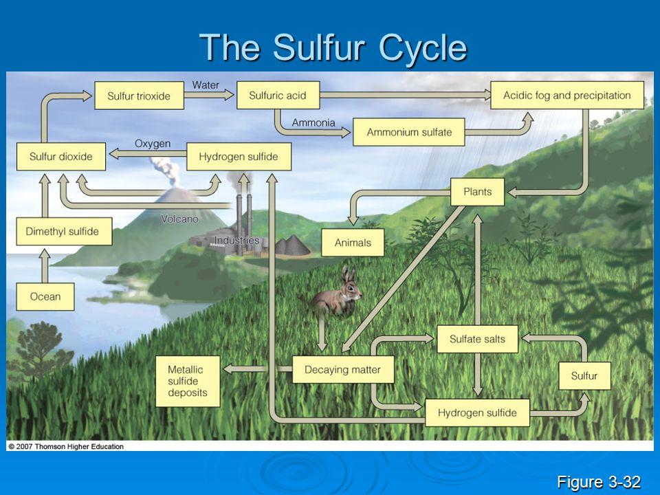The Sulfur Cycle Figure 3-32
