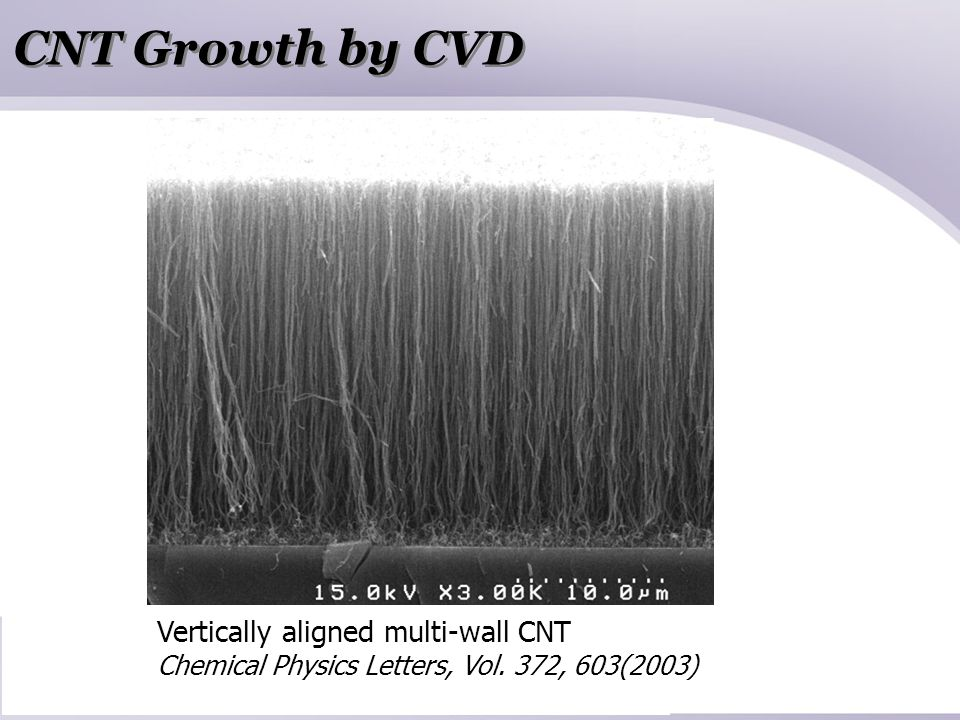 CNT Growth by CVD Vertically aligned multi-wall CNT Chemical Physics Letters, Vol. 372, 603(2003)
