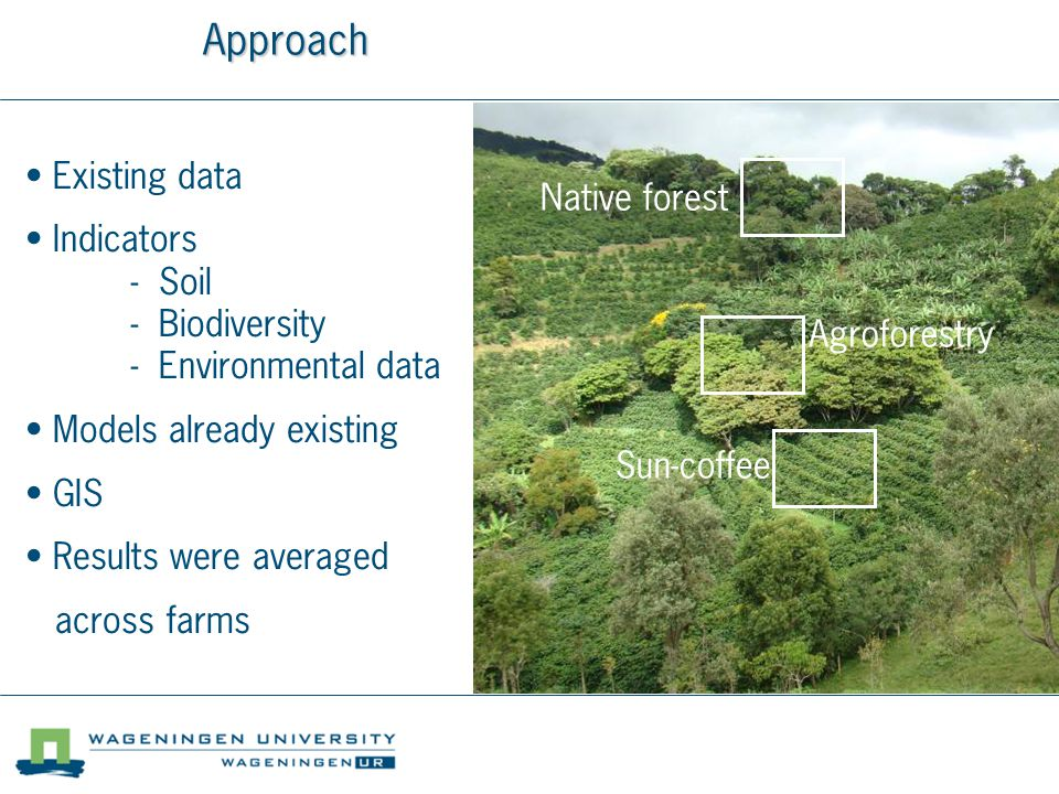 Approach Native forest Agroforestry Sun-coffee Existing data Indicators - Soil - Biodiversity - Environmental data Models already existing GIS Results were averaged across farms