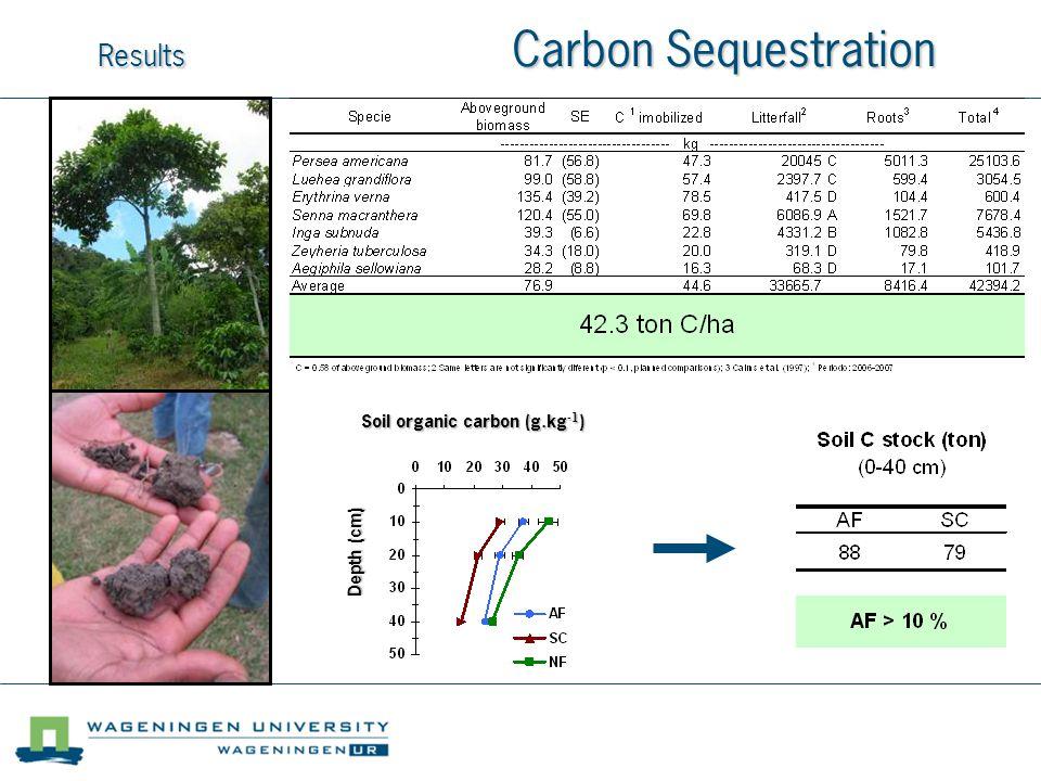 Results Carbon Sequestration Soil organic carbon (g.kg -1 ) Depth (cm)