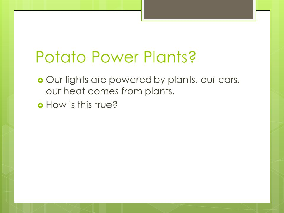 Potato Power Plants?  Our lights are powered by plants, our cars, our heat comes from plants.  How is this true?