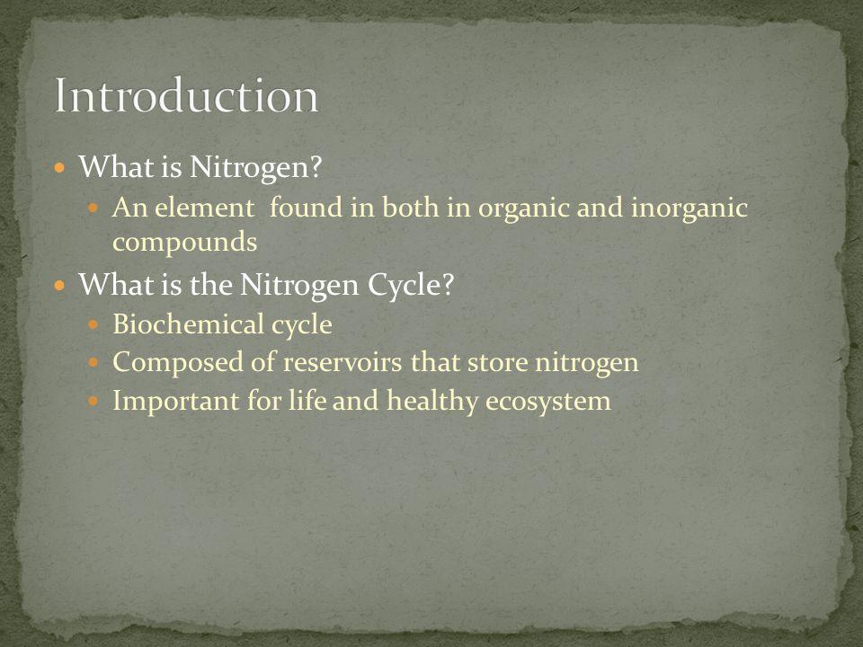 What is Nitrogen.