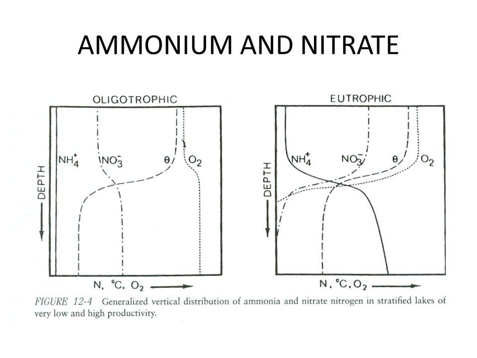 AMMONIUM AND NITRATE