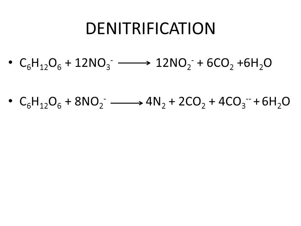 DENITRIFICATION C 6 H 12 O 6 + 12NO 3 - 12NO 2 - + 6CO 2 +6H 2 O C 6 H 12 O 6 + 8NO 2 - 4N 2 + 2CO 2 + 4CO 3 -- + 6H 2 O
