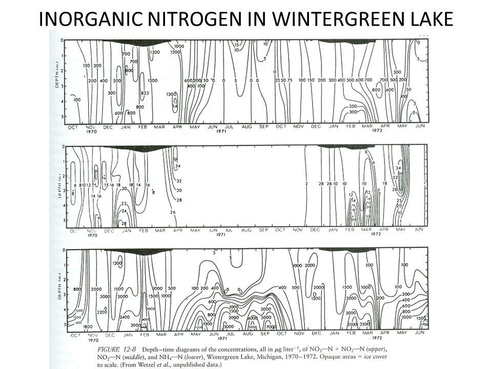 INORGANIC NITROGEN IN WINTERGREEN LAKE