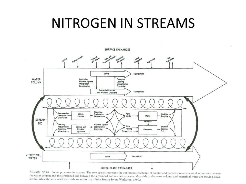 NITROGEN IN STREAMS