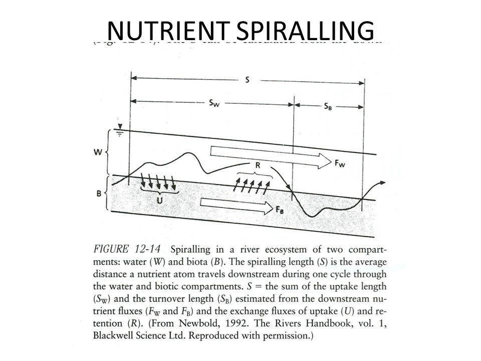 NUTRIENT SPIRALLING