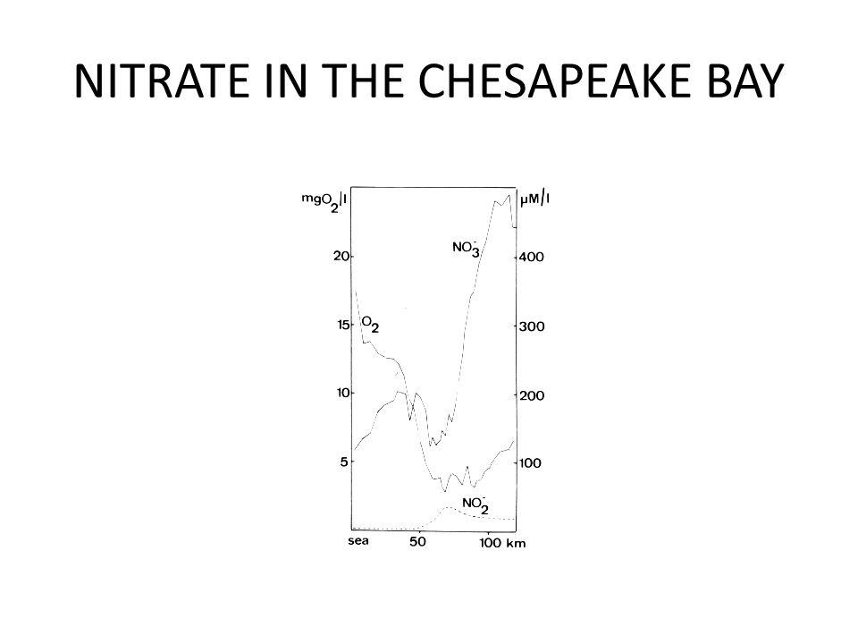 NITRATE IN THE CHESAPEAKE BAY