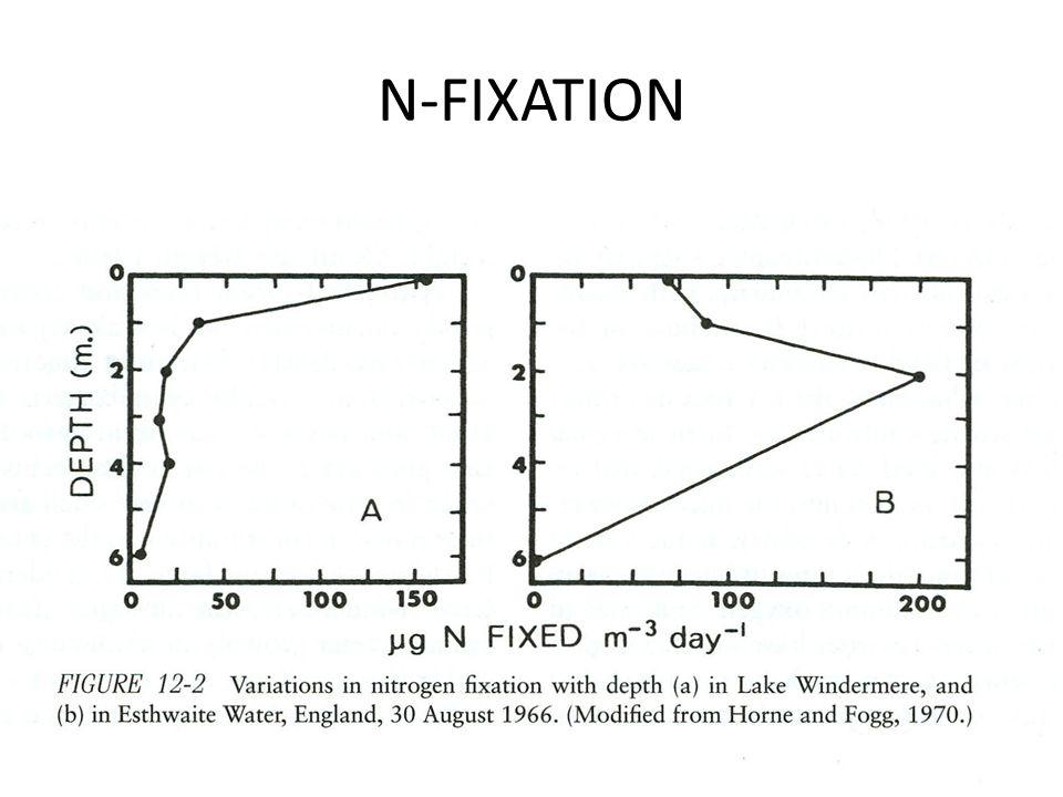 N-FIXATION