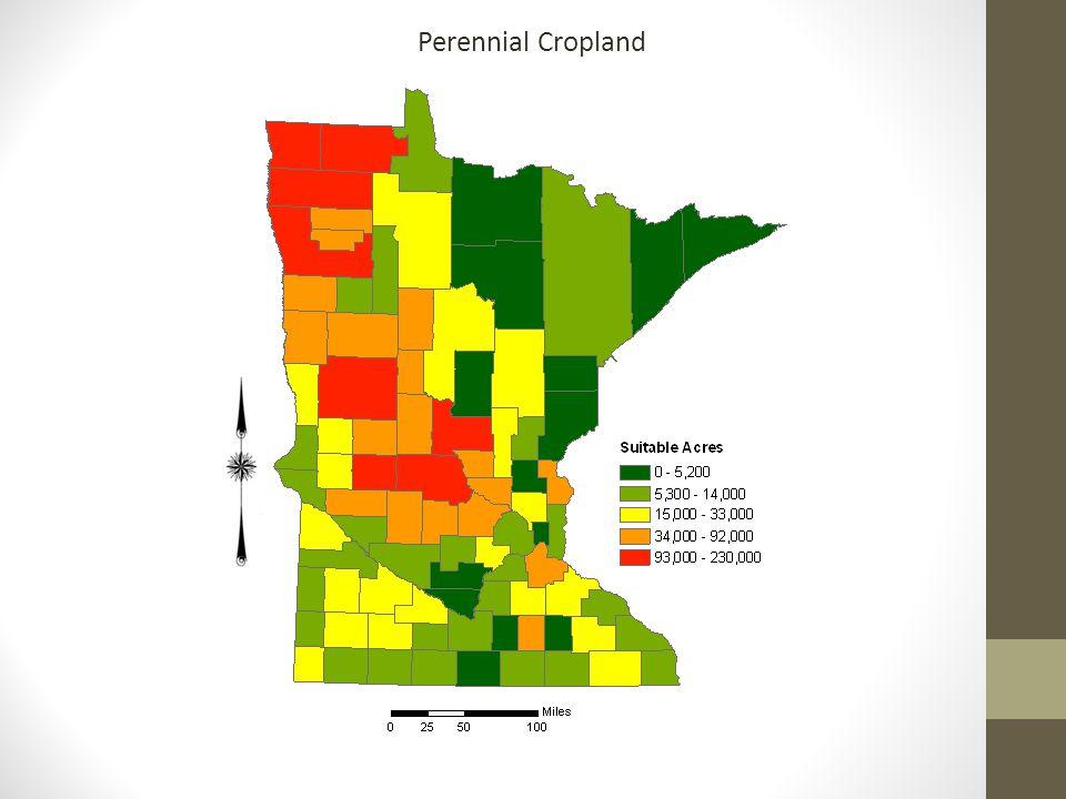 Perennial Cropland