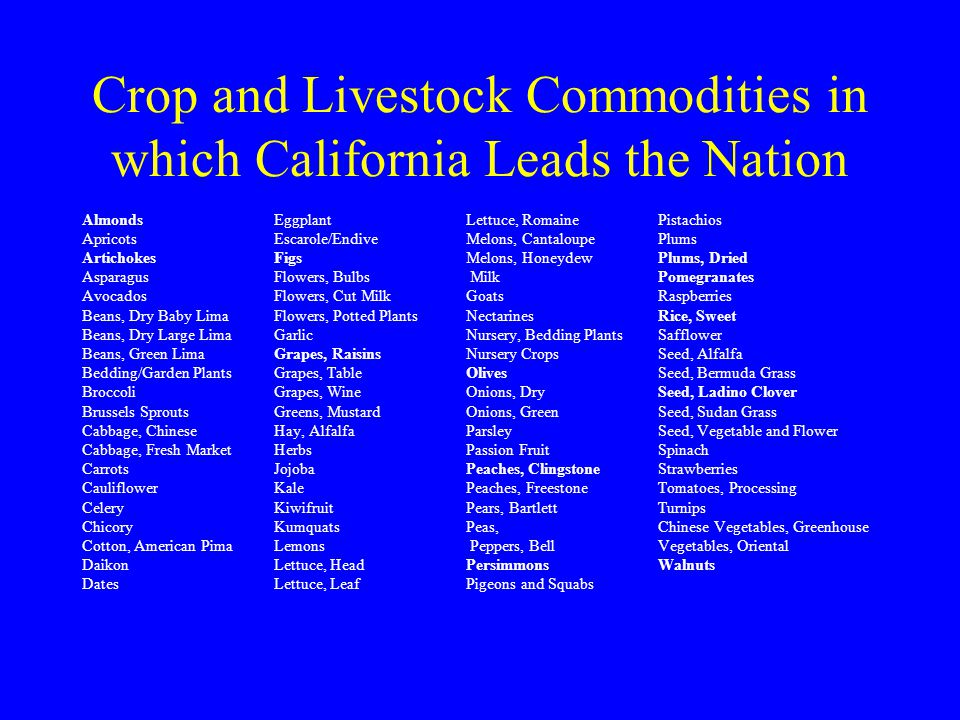 Crop and Livestock Commodities in which California Leads the Nation Almonds Eggplant Lettuce, Romaine Pistachios Apricots Escarole/Endive Melons, Cant