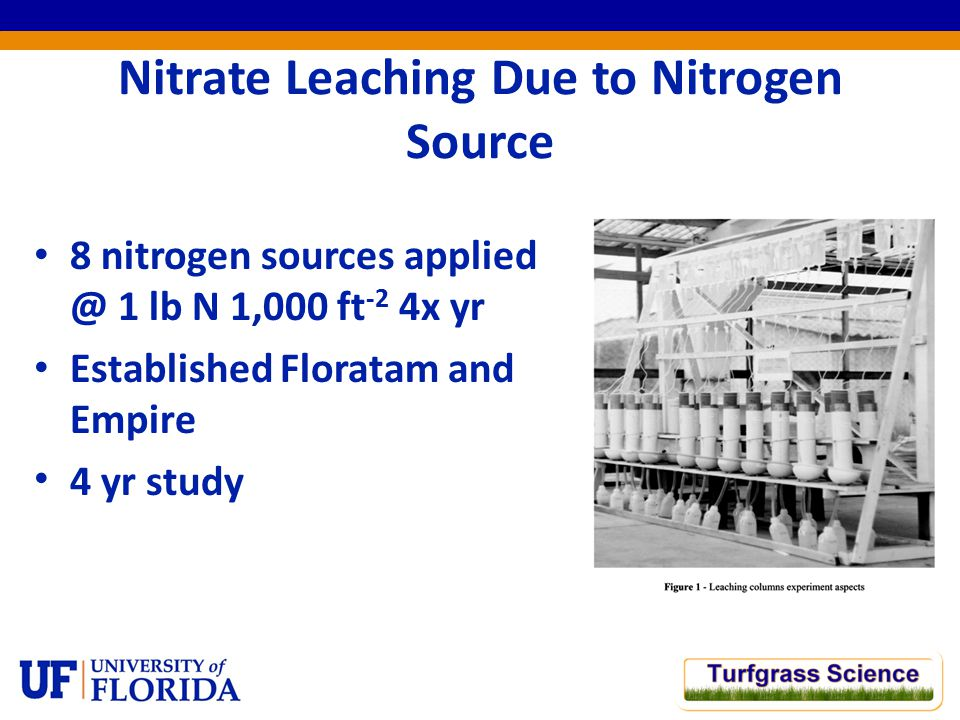 Nitrate Leaching Due to Nitrogen Source 8 nitrogen sources applied @ 1 lb N 1,000 ft -2 4x yr Established Floratam and Empire 4 yr study