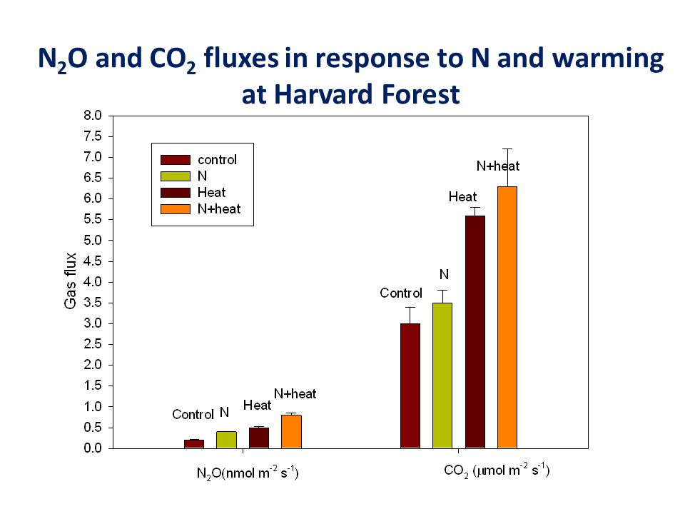N 2 O and CO 2 fluxes in response to N and warming at Harvard Forest