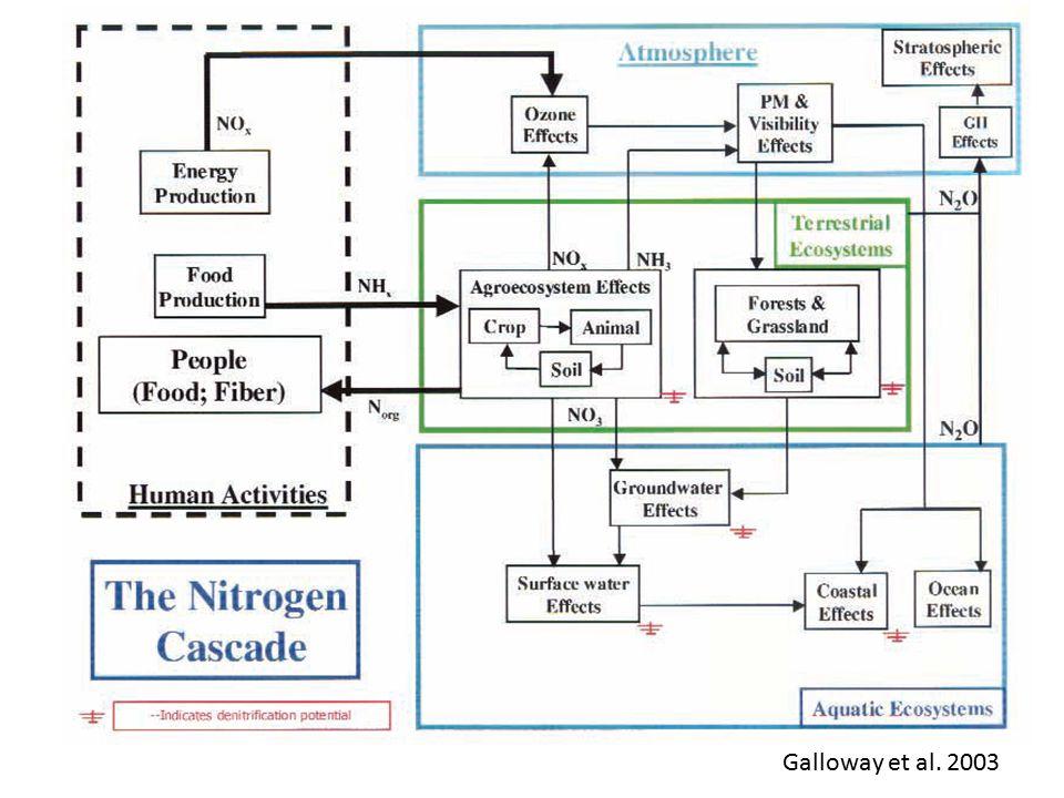 Galloway et al. 2003