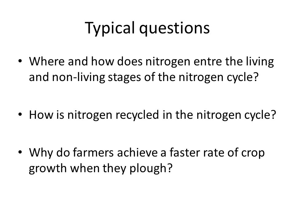 Typical questions Where and how does nitrogen entre the living and non-living stages of the nitrogen cycle.