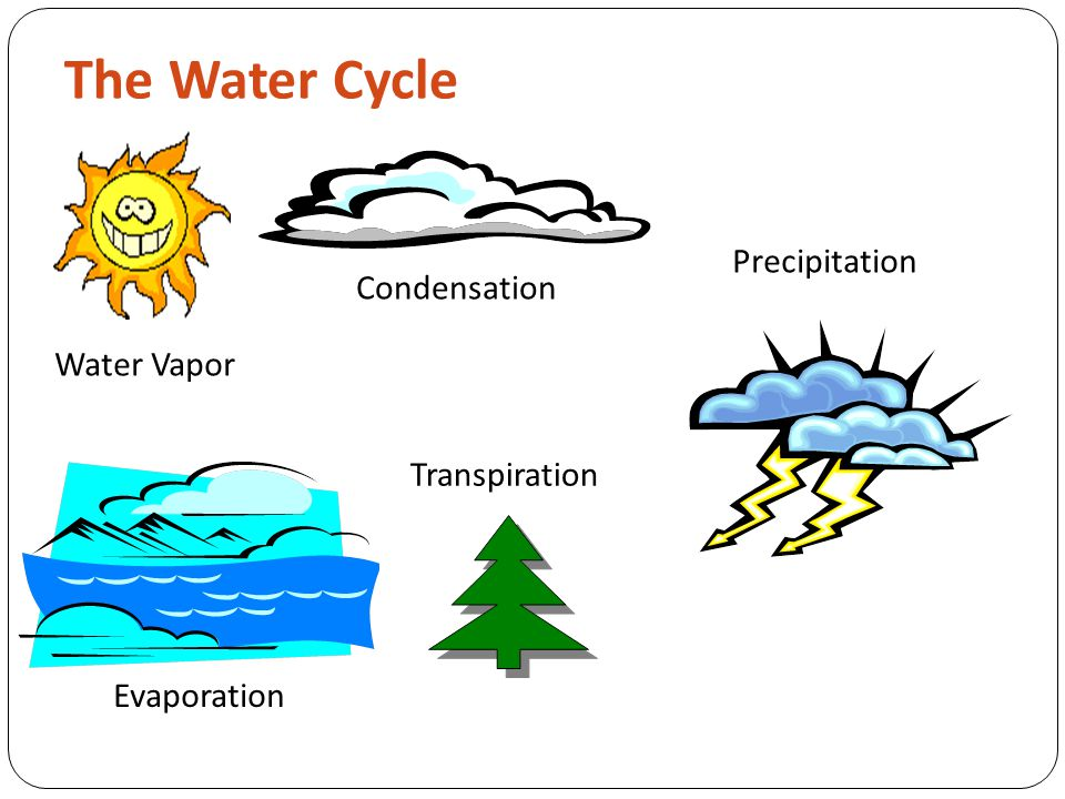 Water Cycle Water never leaves the Earth.