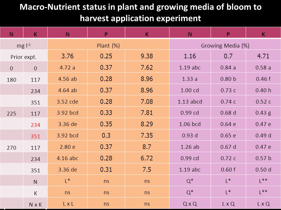 Assoc.Prof.Dr.Sungcom Techawongstien Department of Horticulture, Faculty of Agriculture Khon Kaen University Macro-Nutrient status in plant and growin
