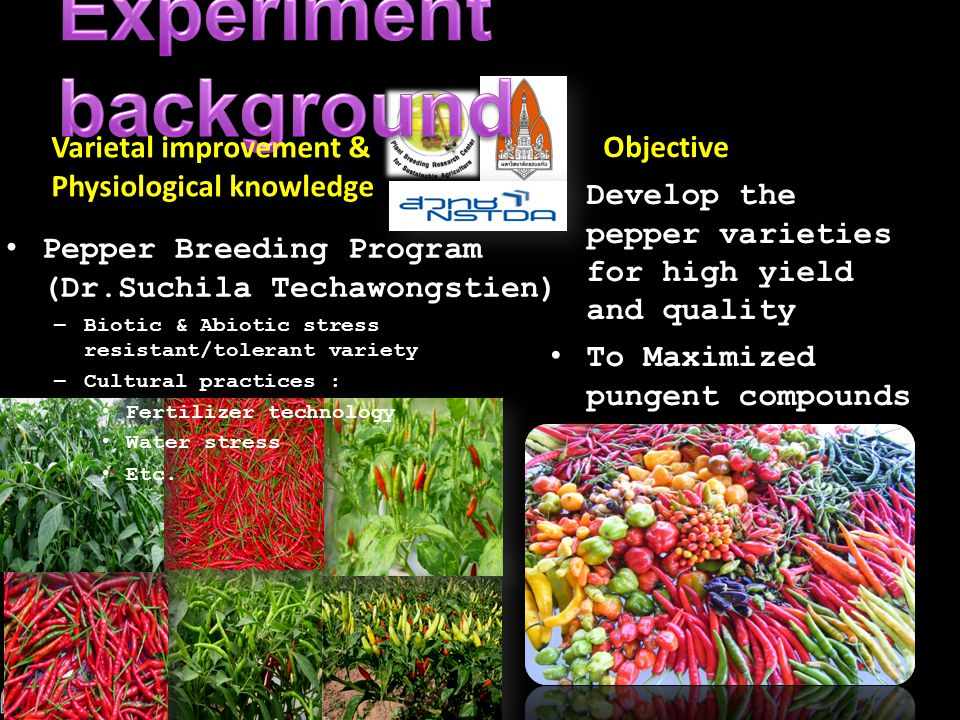 Assoc.Prof.Dr.Sungcom Techawongstien Department of Horticulture, Faculty of Agriculture Khon Kaen University Varietal improvement & Physiological know