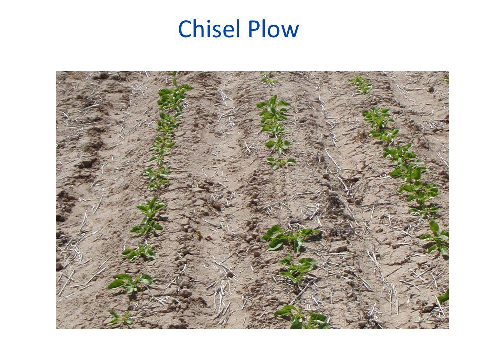 Chisel Plow