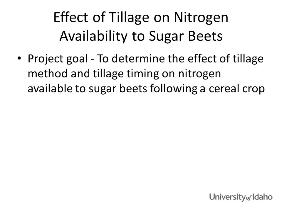 Experimental design Tillage study at USDA-ARS Kimberly – David Tarkalson and Dave Bjorneberg Three tillage methods – Strip till (ST) – Chisel plow (CP) – Moldboard plow (MP) Two tillage times – Fall and spring Five fertilizer N rates, including a control