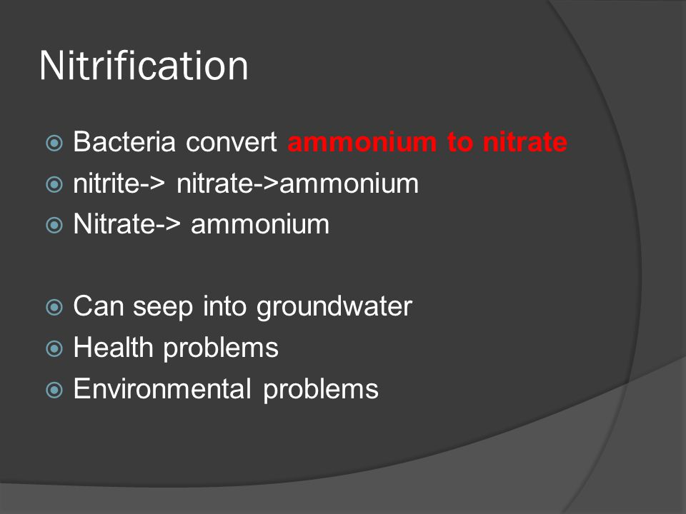 Nitrification  Bacteria convert ammonium to nitrate  nitrite-> nitrate->ammonium  Nitrate-> ammonium  Can seep into groundwater  Health problems  Environmental problems