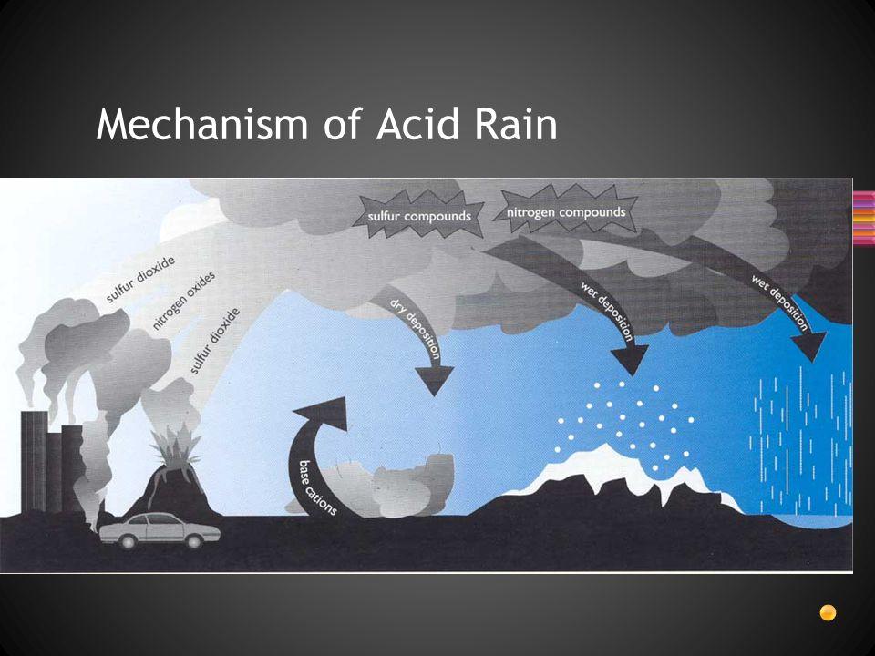 Mechanism of Acid Rain