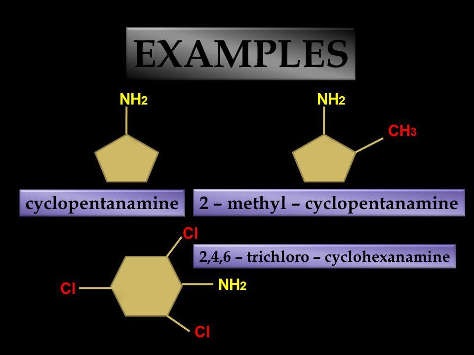 EXAMPLES CH 3 – NH – CH 3 dimethylamine CH 3 – CH 2 – NH – CH 3 ethylmethylamine CH 3 – CH 2 – N – CH 3 3 HC ethyldimethylamine CH 3 – N – CH 3 CH 3 trimethylamine