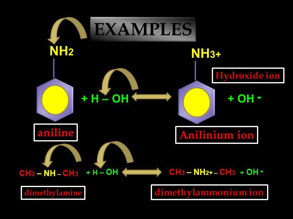 AMINE + Water ↔ Alkyl ammonium ion + Hydroxide ion CH 3 – NH 2 + H – OHCH 3 – NH 3 + + OH ־