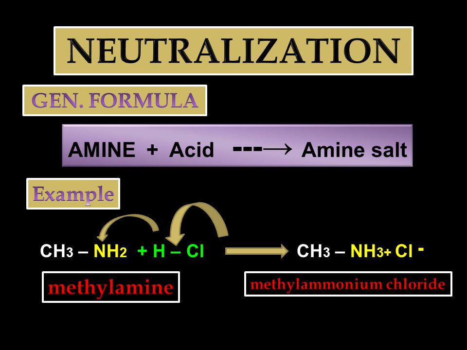 EXAMPLES NH 2 aniline + H – OH NH 3+ Anilinium ion + OH ־ CH 3 – NH – CH 3 + H – OH dimethylamine CH 3 – NH 2 + – CH 3 + OH ־